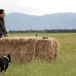 Bill for Ranch a Cortona