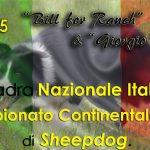 Componente Nazionale Italiana ai CSC 2015
